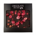 Dark chocolate with cranberry and black currant